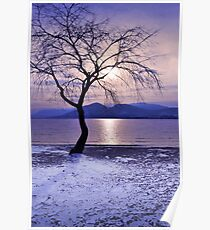 Winter Light at Manitou Beach Poster