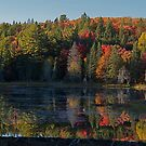 Algonquin Park, Northern Ontario by creativegenious
