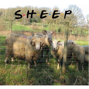 Sheep T-Shirt by babybadger