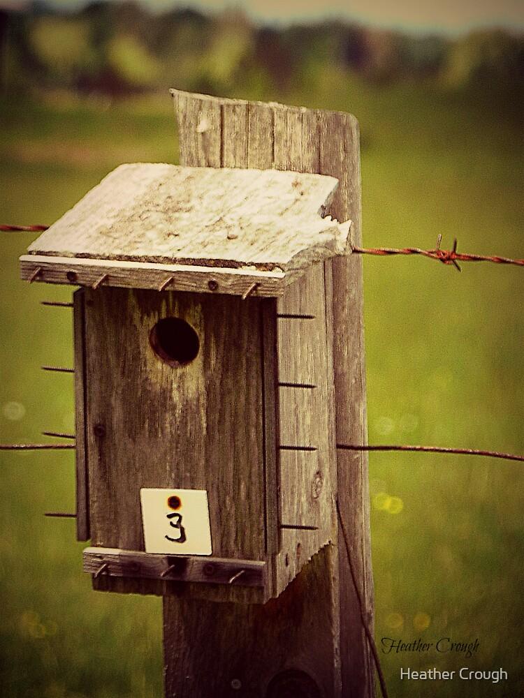 Bird house #3 by Heather Crough