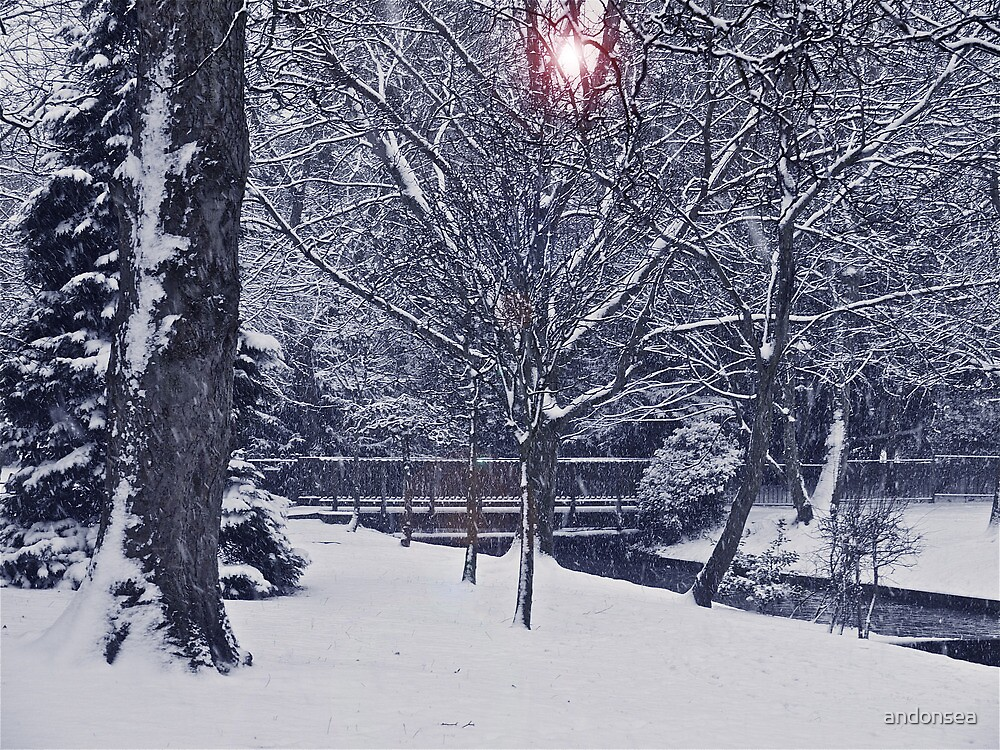 Winter Light - The First Snowfall by andonsea