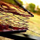 Rusted Mattress  by Nathan Walz