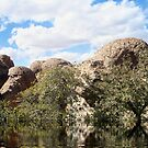 The Lake (someplace in AZ) by Penny Rinker