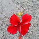 Fallen by Ticker