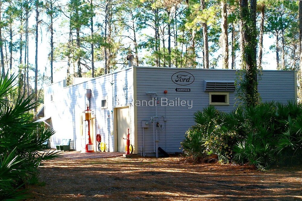 Old-timey service station under the pines by ♥⊱ B. Randi Bailey