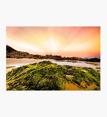 Saltwater Beach NSW Australia Photographic Print