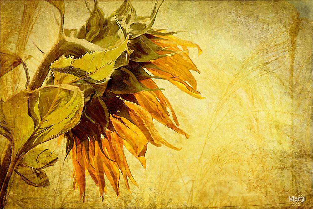 Fade Away by Margi