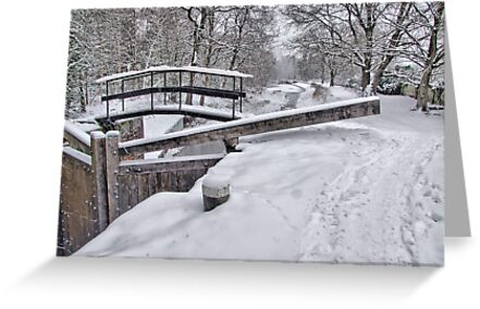 Deepcut Locks - HDR by Colin  Williams Photography