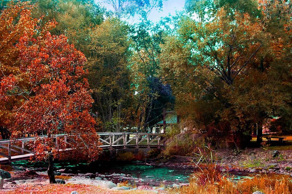 Hareittvile suspension bridge autum colours by Glen Johnson
