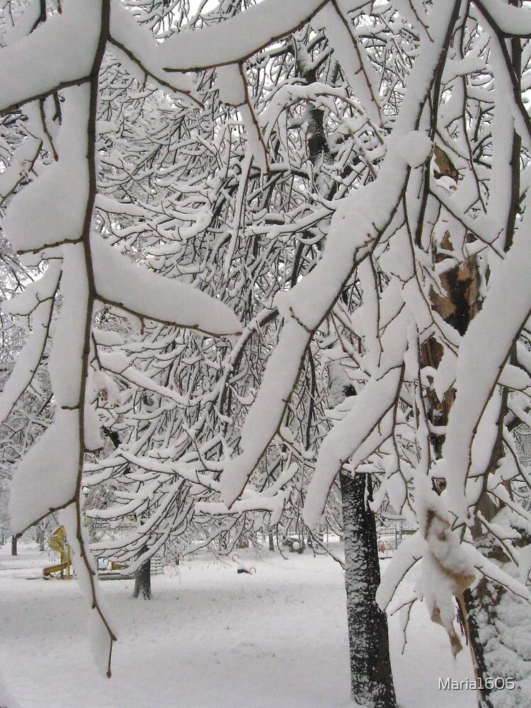 Heavy snow by Maria1606