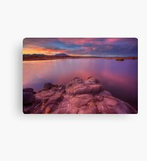 Willow Lake Pink Blue Canvas Print