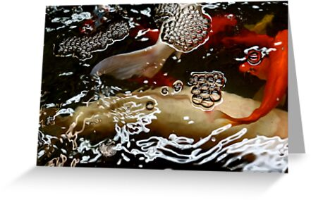 Abstract - Koi  by Mary Ellen Garcia
