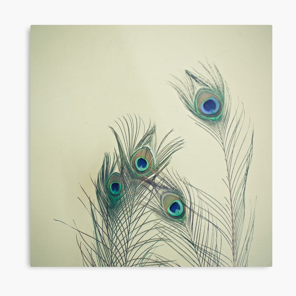 All Eyes Are on You  Metal Print