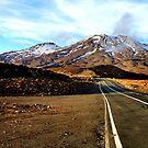 Road to Mount Ruapehu by hans p olsen