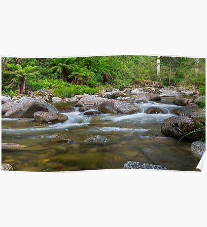 Rocky Valley Creek - Alpine National Park Victoria Poster
