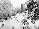 Secret Garden In The Snow by Ruski