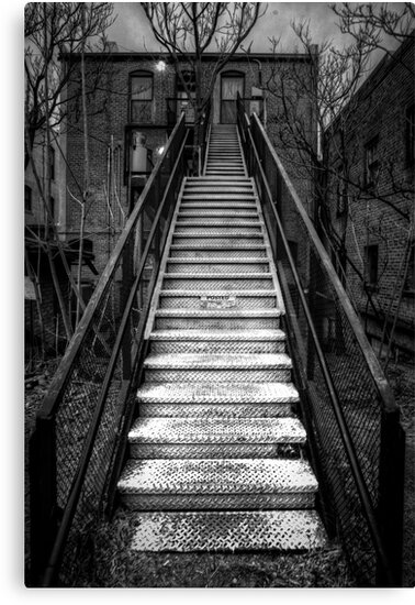 Step Lightly by Bob Larson