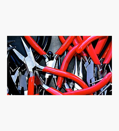 Something Red & Pointy Photographic Print