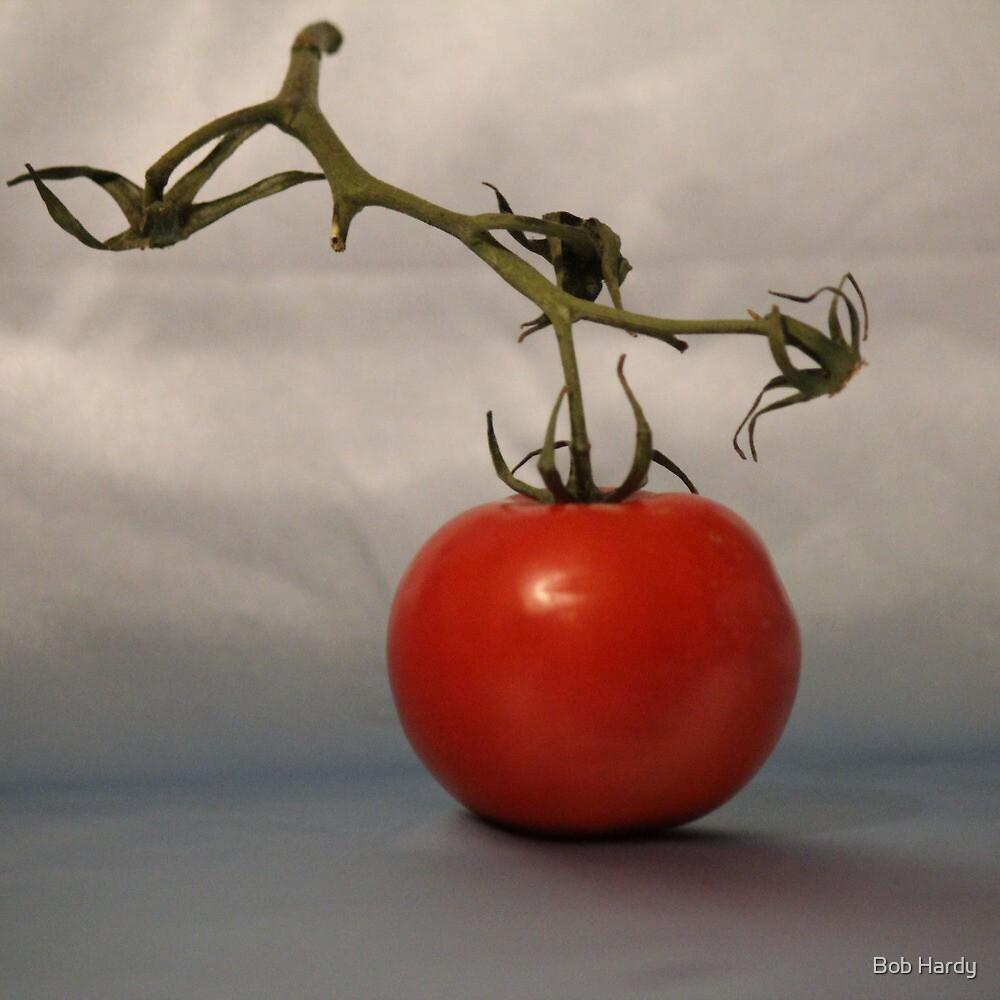Studio Tomato by Bob Hardy
