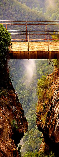 Vertigo -  Leura - Blue Mountains World Heritage Area The HDR Experience by Philip Johnson