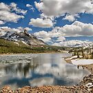 Tioga Lake by Cat Connor