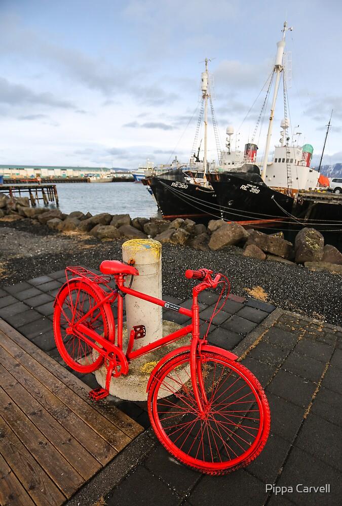 Reykjavik: Capital Contrasts by Pippa Carvell