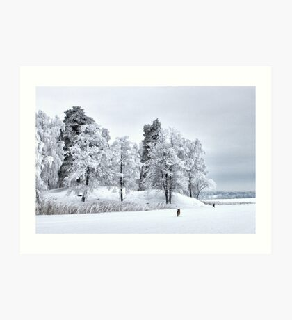 Frosted freedom Art Print