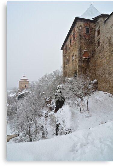 Castle at Lipnice nad sazavou Czech republic by dalekenworthy