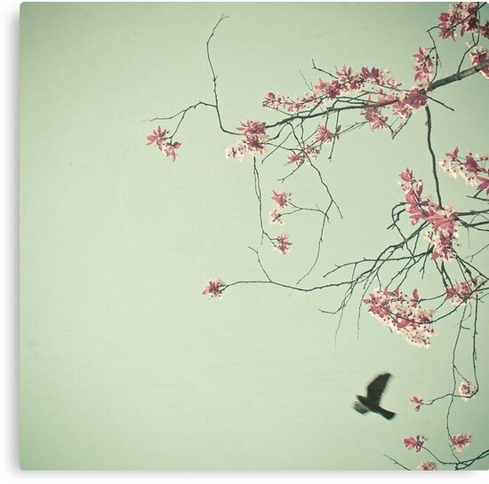 Free as a Bird by Cassia Beck