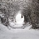 Tunnel Of Snow by Paul Barnett