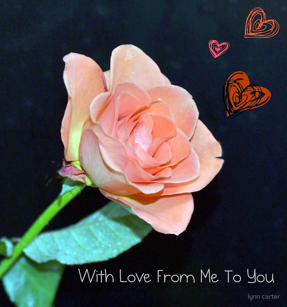 From Me To You by lynn carter