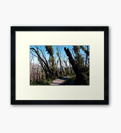 untitled #56 Framed Print
