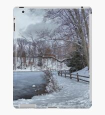 Pondering Winter iPad Case/Skin