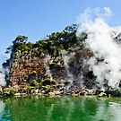 Steaming Cliffs, Lake Rotomahana by Dilshara Hill