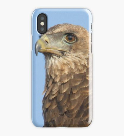 Juvenile Bateleur Eagle iPhone Case