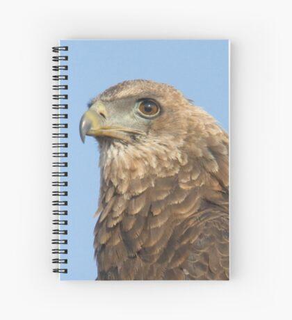 Juvenile Bateleur Eagle Spiral Notebook