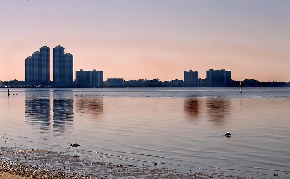 Morning Glow on the River  by John  Kapusta