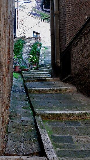 Wear Worn Steps by phil decocco
