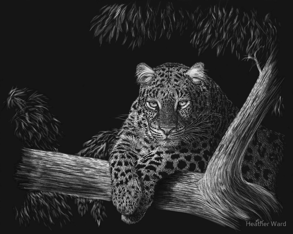 Spotted - leopard by Heather Ward
