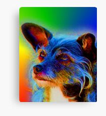 Terrier Mix Dog Adoring Eyes In Abstract Canvas Print