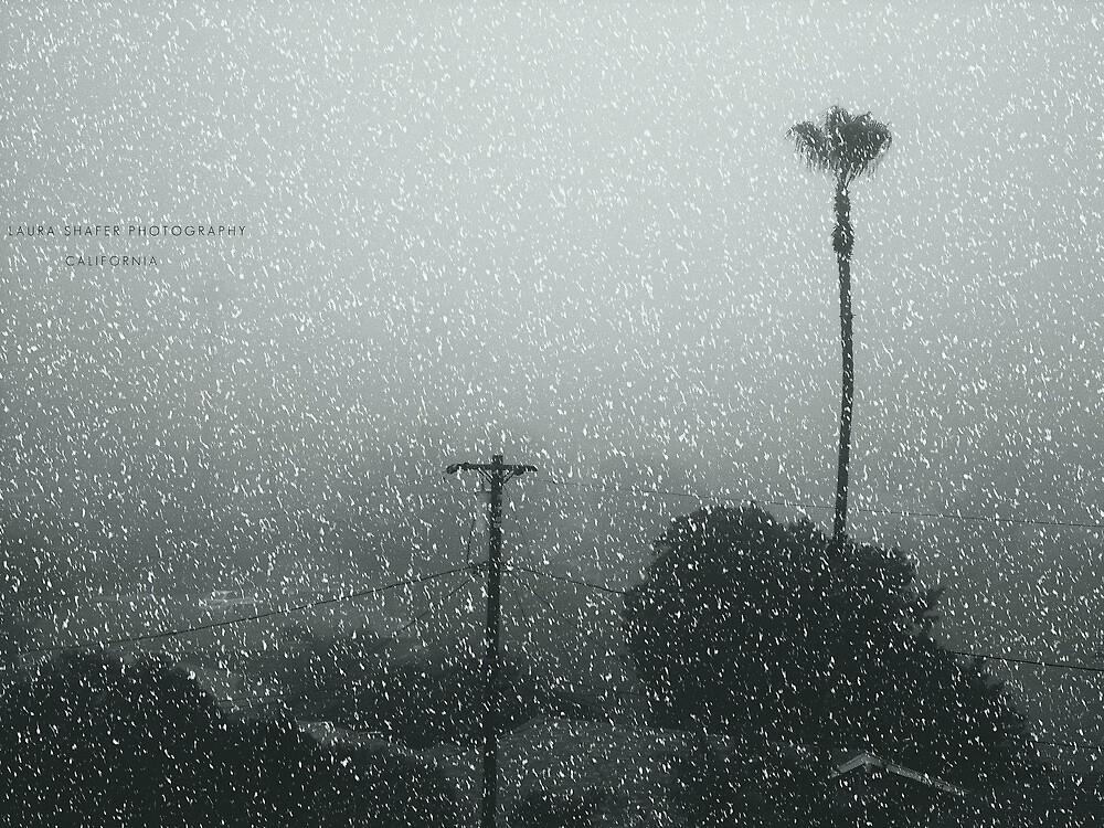 CALIFORNIA  #016 by Laura E  Shafer