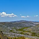 The Bogong High Plains by Mark  Lucey