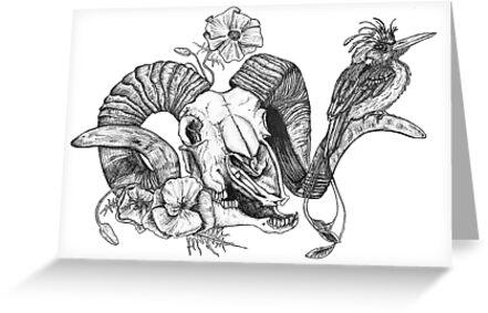 The Ram skull and bird by kirstenmcnee