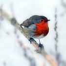 My little friend  by larry flewers