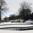Snowy scene by ClaireWroe