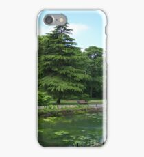 Scenic View iPhone Case/Skin