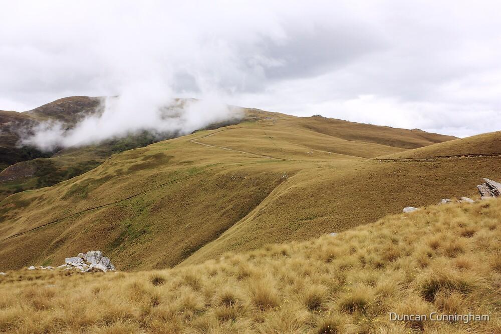 Dansey's Pass, Otago by Duncan Cunningham