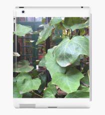 NYC, Vines in the Village iPad Case/Skin