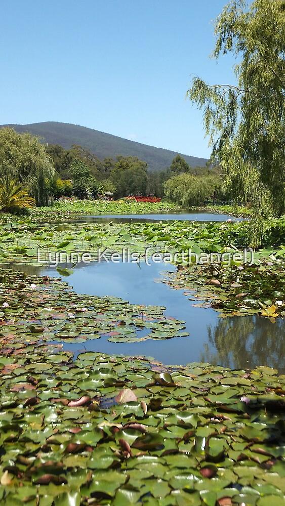 View of Paradise by Lynne Kells (earthangel)