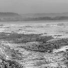 Sea Shore black and white by Glen Johnson
